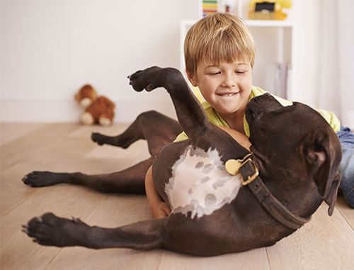 boy laing in floor hugging his dog